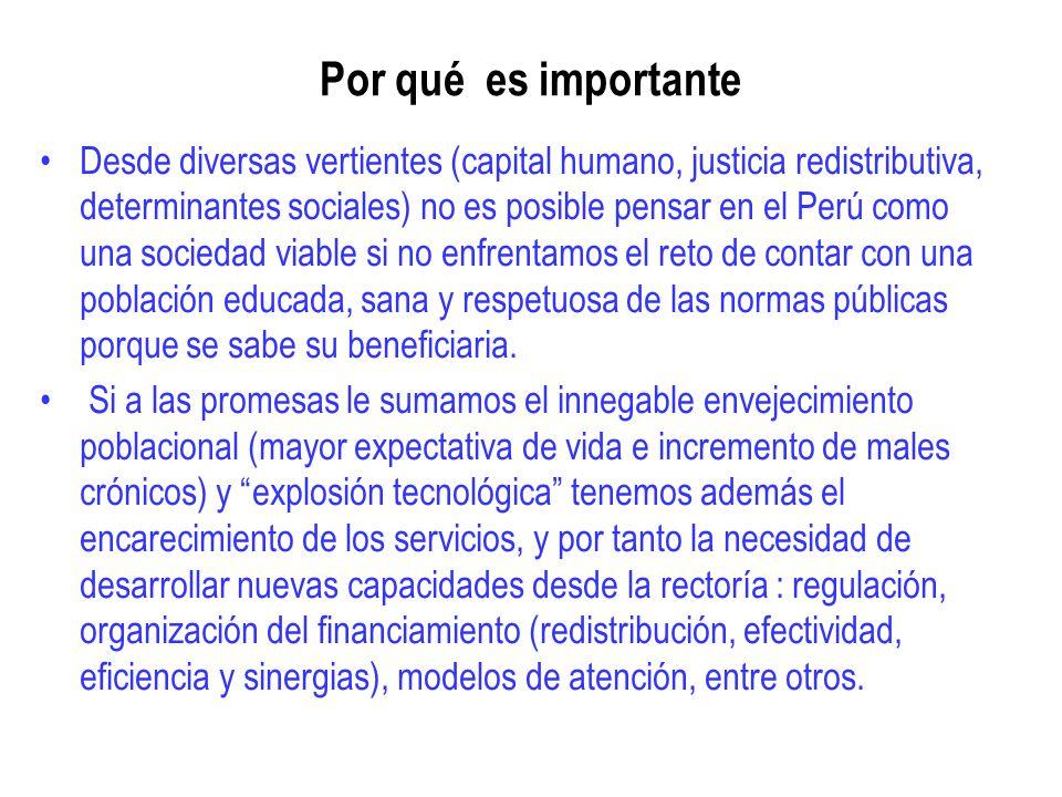 Por qué es importante Desde diversas vertientes (capital humano, justicia redistributiva, determinantes sociales) no es posible pensar en el Perú como