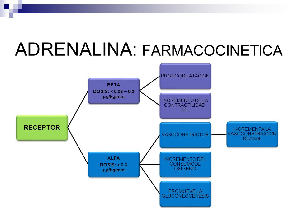 ADRENALINA: FARMACOCINETICA RECEPTOR BETA DOSIS: < 0.02 – 0.3 g/kg/min BRONCODILATACION INCREMENTO DE LA CONTRACTILIDAD, FC. ALFA DOSIS: > 0.3 g/kg/mi