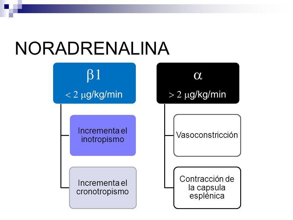 NORADRENALINA g/kg/min Incrementa el inotropismo Incrementa el cronotropismo g/kg/min Vasoconstricción Contracción de la capsula esplénica
