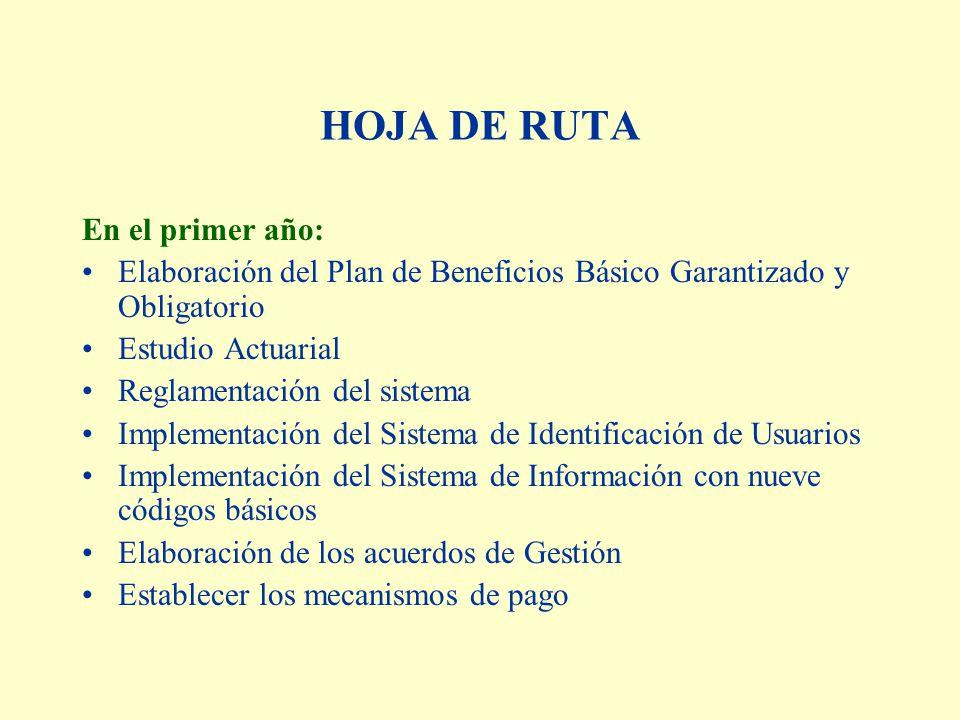 HOJA DE RUTA En el primer año: Elaboración del Plan de Beneficios Básico Garantizado y Obligatorio Estudio Actuarial Reglamentación del sistema Implementación del Sistema de Identificación de Usuarios Implementación del Sistema de Información con nueve códigos básicos Elaboración de los acuerdos de Gestión Establecer los mecanismos de pago