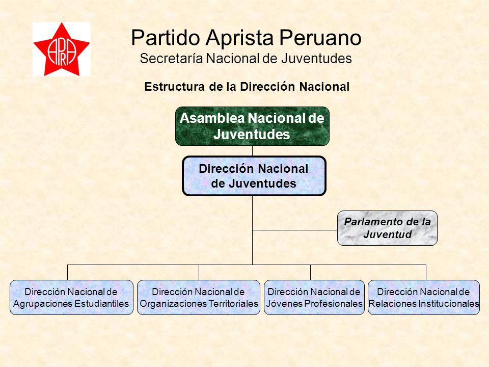 Partido Aprista Peruano Secretaría Nacional de Juventudes Dirección Nacional de Juventudes Dirección Nacional de Agrupaciones Estudiantiles Dirección Nacional de Organizaciones Territoriales Dirección Nacional de Jóvenes Profesionales Dirección Nacional de Relaciones Institucionales Parlamento de la Juventud Estructura de la Dirección Nacional Asamblea Nacional de Juventudes