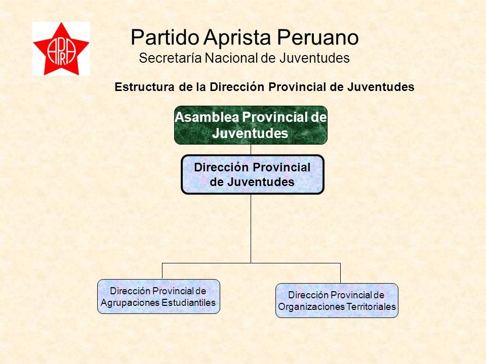 Partido Aprista Peruano Secretaría Nacional de Juventudes Dirección Provincial de Juventudes Dirección Provincial de Agrupaciones Estudiantiles Dirección Provincial de Organizaciones Territoriales Estructura de la Dirección Provincial de Juventudes Asamblea Provincial de Juventudes