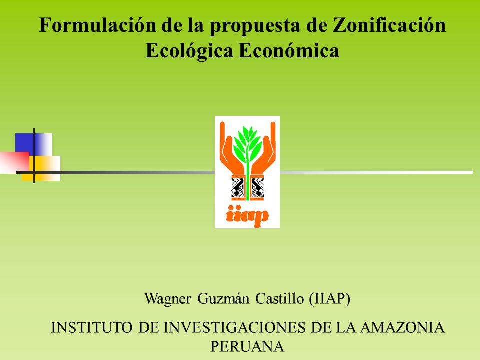 Wagner Guzmán Castillo (IIAP) INSTITUTO DE INVESTIGACIONES DE LA AMAZONIA PERUANA Formulación de la propuesta de Zonificación Ecológica Económica