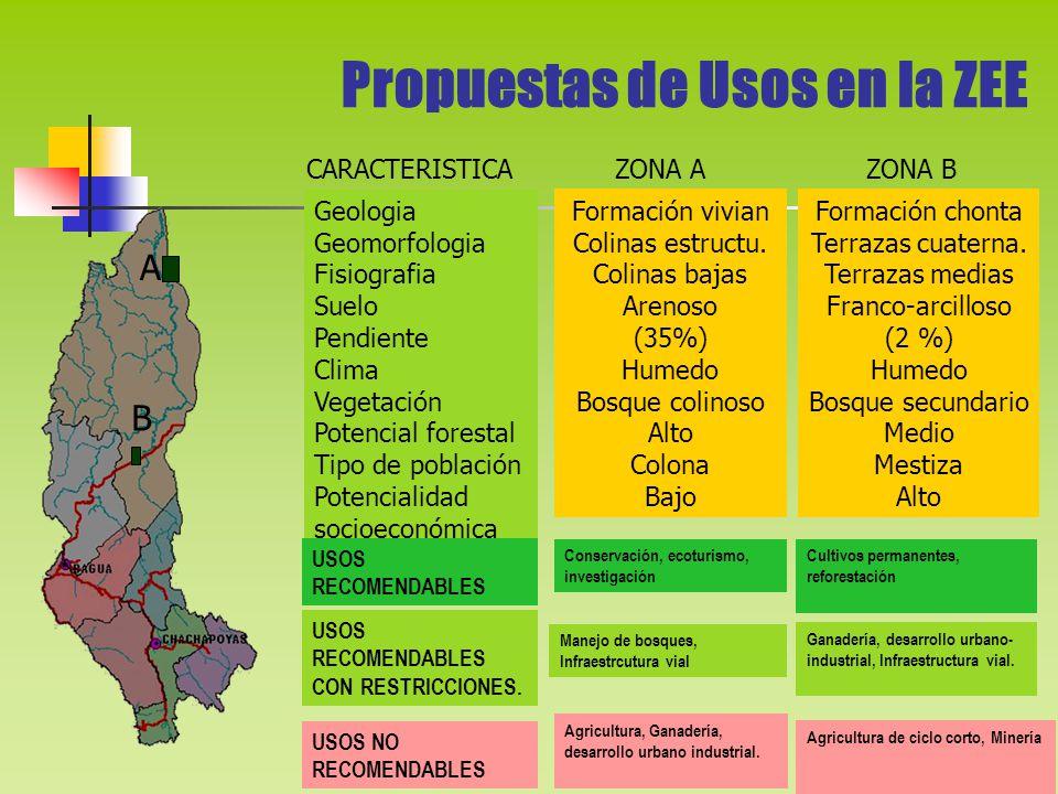 Propuestas de Usos en la ZEE A Geologia Geomorfologia Fisiografia Suelo Pendiente Clima Vegetación Potencial forestal Tipo de población Potencialidad socioeconómica Formación vivian Colinas estructu.