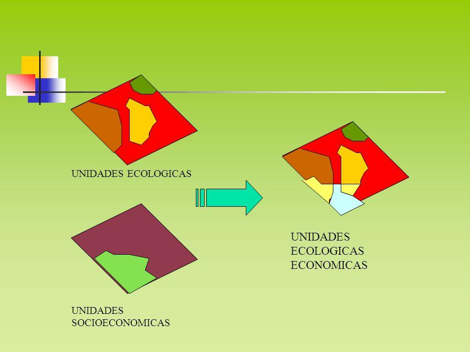 UNIDADES ECOLOGICAS UNIDADES ECOLOGICAS ECONOMICAS UNIDADES SOCIOECONOMICAS