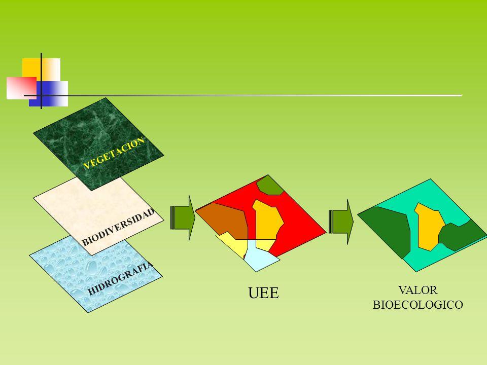 HIDROGRAFIA VEGETACION BIODIVERSIDAD VALOR BIOECOLOGICO UEE