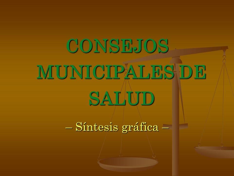 CONSEJOS MUNICIPALES DE SALUD – Síntesis gráfica –