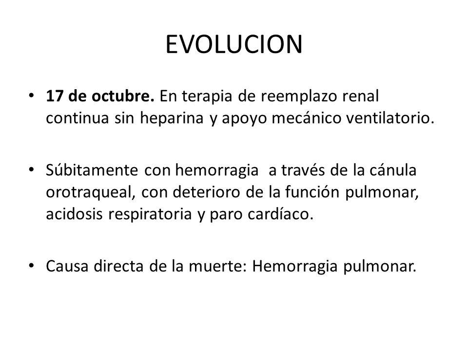EVOLUCION 17 de octubre. En terapia de reemplazo renal continua sin heparina y apoyo mecánico ventilatorio. Súbitamente con hemorragia a través de la