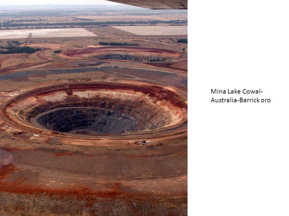 Mina Lake Cowal, Australia-Barrick Gold-oro: Planta de procesamiento de mineral
