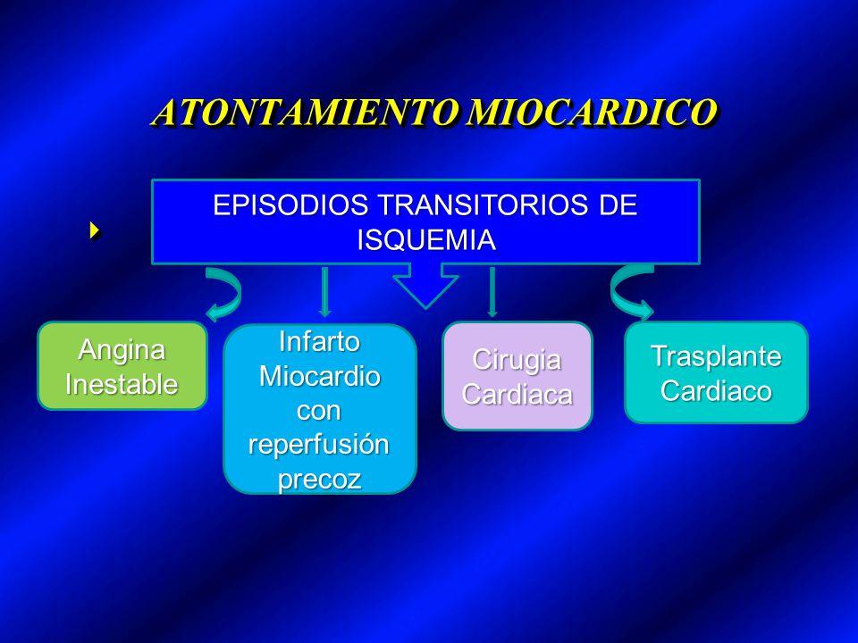 ATONTAMIENTO MIOCARDICO EPISODIOS TRANSITORIOS DE ISQUEMIA AnginaInestable Infarto Miocardio con reperfusión precoz Cirugia Cardiaca Trasplante Cardia