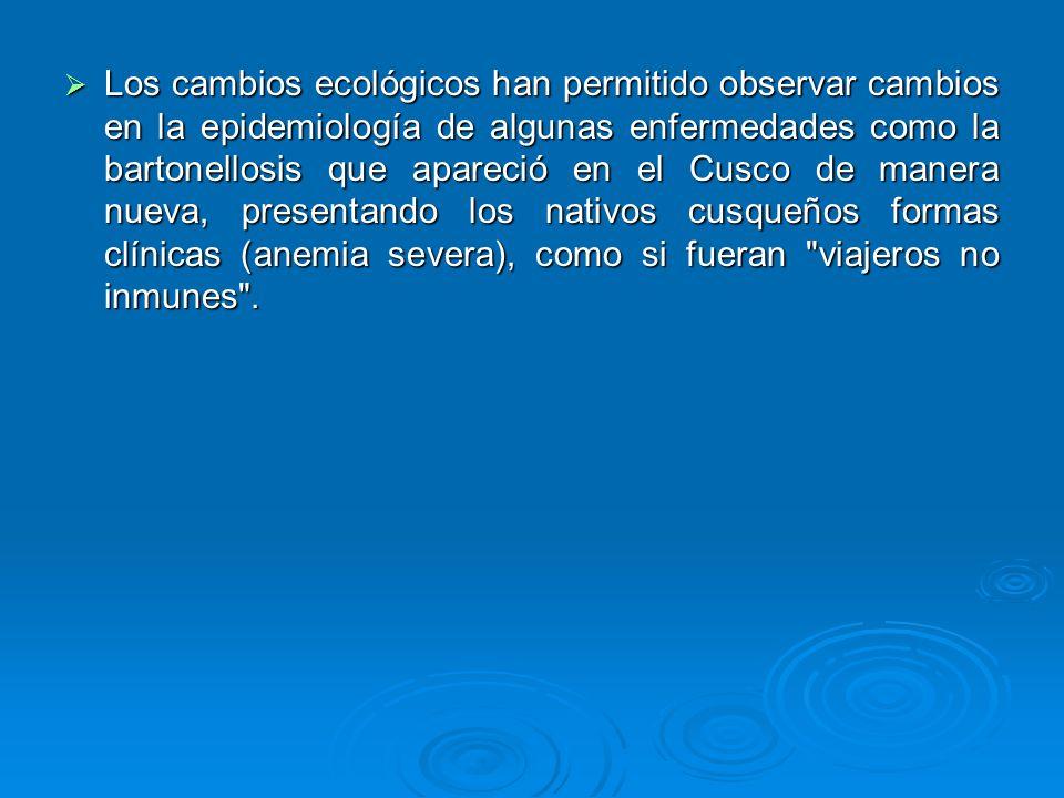Los cambios ecológicos han permitido observar cambios en la epidemiología de algunas enfermedades como la bartonellosis que apareció en el Cusco de ma
