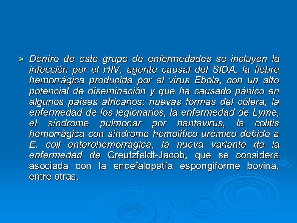 Dentro de este grupo de enfermedades se incluyen la infección por el HIV, agente causal del SIDA, la fiebre hemorrágica producida por el virus Ebola,