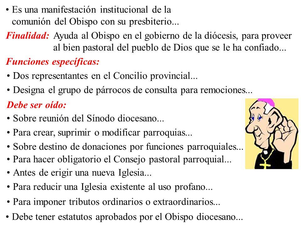 Es una manifestación institucional de la comunión del Obispo con su presbiterio... Funciones específicas: Dos representantes en el Concilio provincial