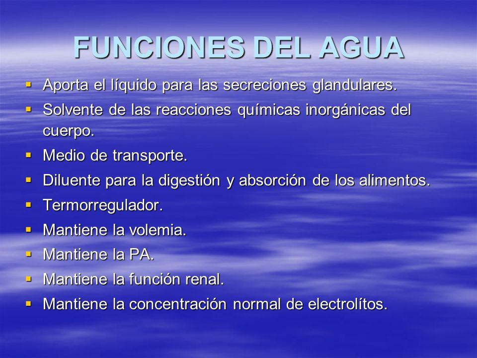 FUNCIONES DEL AGUA Aporta el líquido para las secreciones glandulares. Aporta el líquido para las secreciones glandulares. Solvente de las reacciones