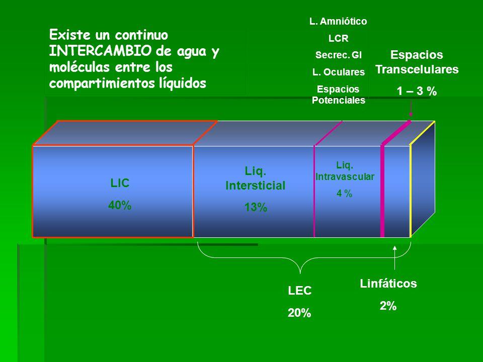 LIC 40% Liq. Intersticial 13% Liq. Intravascular 4 % LEC 20% Linfáticos 2% Espacios Transcelulares 1 – 3 % L. Amniótico LCR Secrec. GI L. Oculares Esp