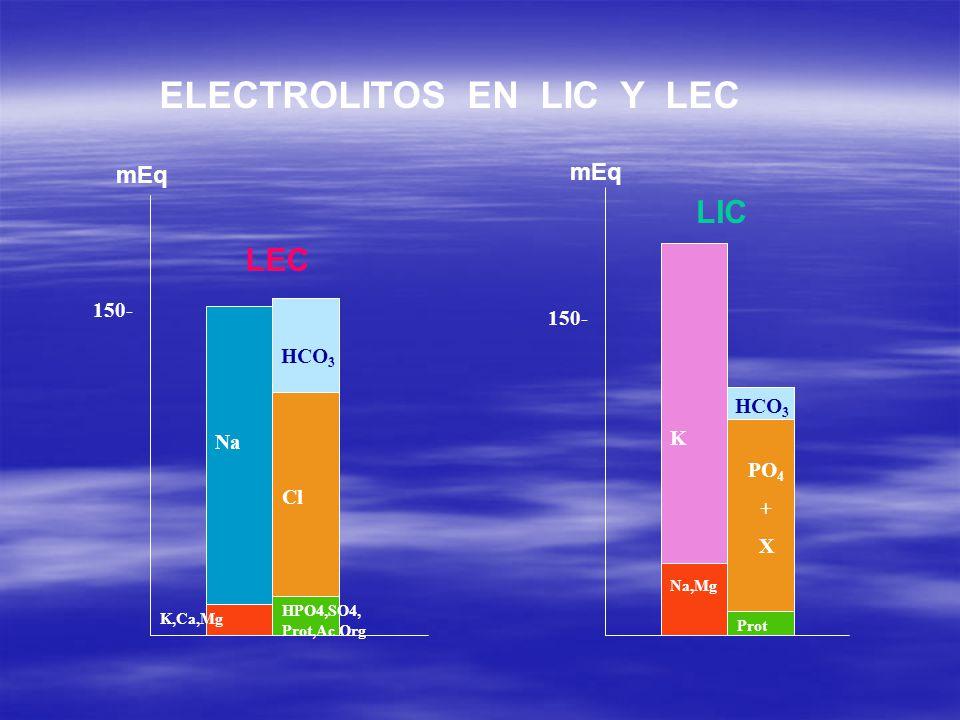 Na Cl HCO 3 K,Ca,Mg HPO4,SO4, Prot,Ac Org LEC K PO 4 + X HCO 3 Na,Mg Prot LIC mEq 150- ELECTROLITOS EN LIC Y LEC