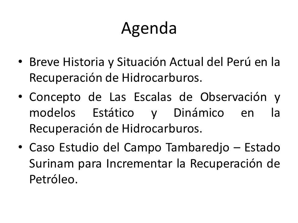 Agenda Breve Historia y Situación Actual del Perú en la Recuperación de Hidrocarburos. Concepto de Las Escalas de Observación y modelos Estático y Din