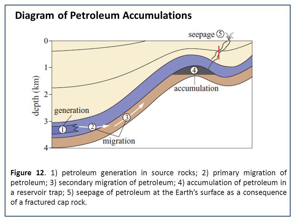 Figure 12. 1) petroleum generation in source rocks; 2) primary migration of petroleum; 3) secondary migration of petroleum; 4) accumulation of petrole