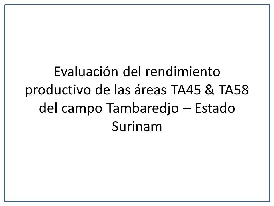Evaluación del rendimiento productivo de las áreas TA45 & TA58 del campo Tambaredjo – Estado Surinam