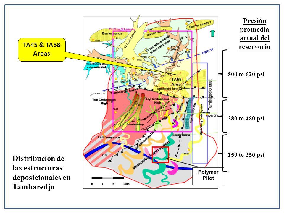 500 to 620 psi Presión promedia actual del reservorio 280 to 480 psi 150 to 250 psi TA45 & TA58 Areas Distribución de las estructuras deposicionales en Tambaredjo