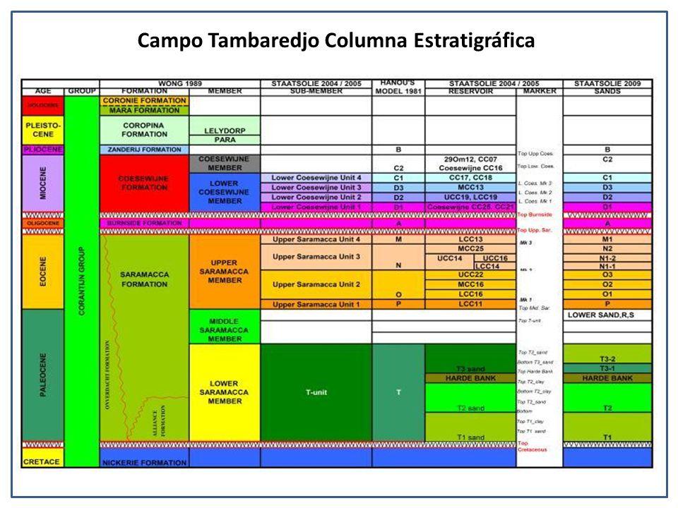 Campo Tambaredjo Columna Estratigráfica