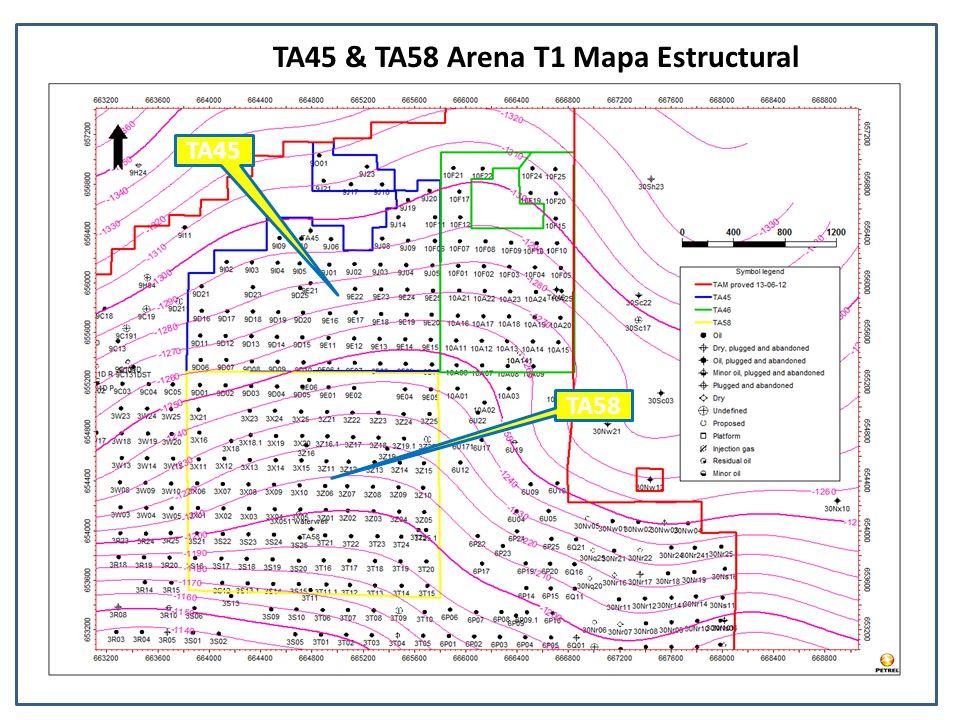 TA45 & TA58 Arena T1 Mapa Estructural TA45 TA58