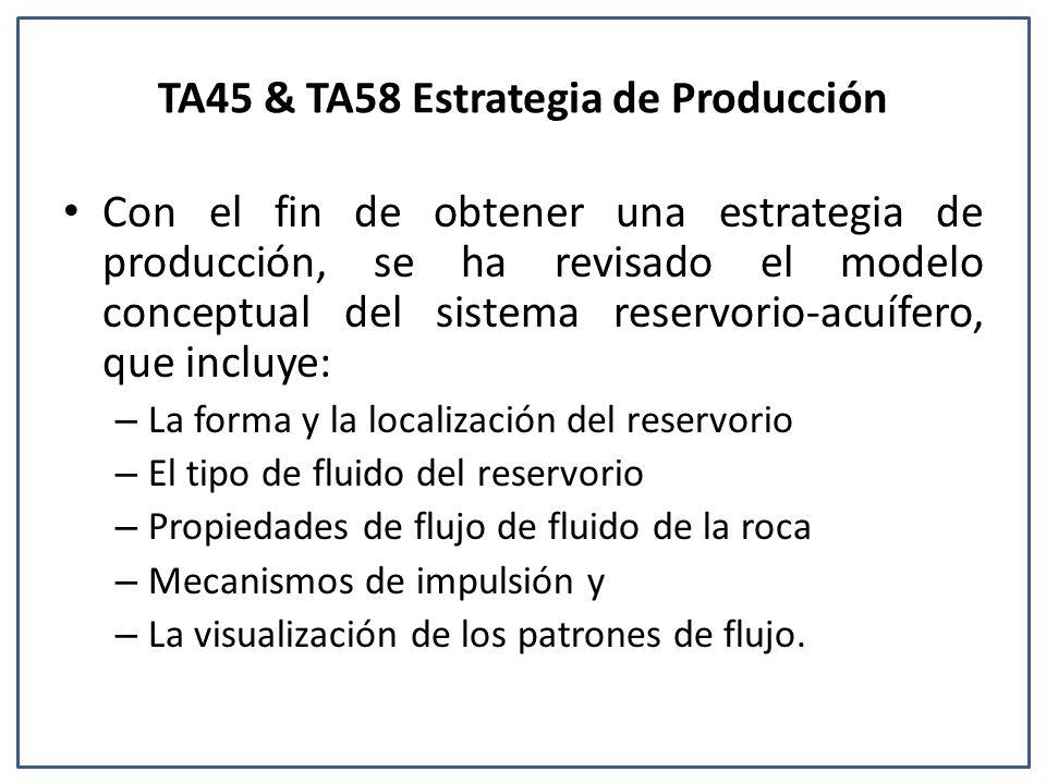 TA45 & TA58 Estrategia de Producción Con el fin de obtener una estrategia de producción, se ha revisado el modelo conceptual del sistema reservorio-acuífero, que incluye: – La forma y la localización del reservorio – El tipo de fluido del reservorio – Propiedades de flujo de fluido de la roca – Mecanismos de impulsión y – La visualización de los patrones de flujo.