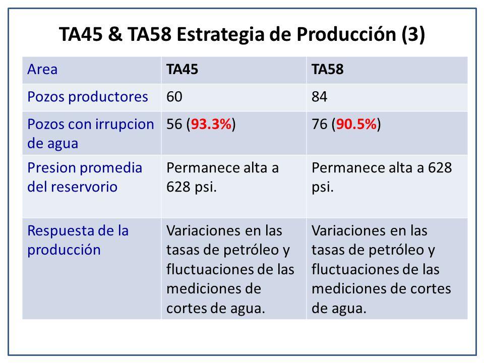 TA45 & TA58 Estrategia de Producción (3) AreaTA45TA58 Pozos productores6084 Pozos con irrupcion de agua 56 (93.3%)76 (90.5%) Presion promedia del reservorio Permanece alta a 628 psi.