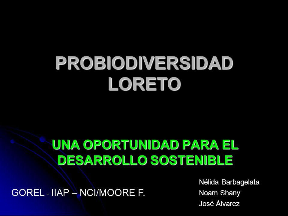 PROBIODIVERSIDAD LORETO UNA OPORTUNIDAD PARA EL DESARROLLO SOSTENIBLE GOREL - IIAP – NCI/MOORE F. Nélida Barbagelata Noam Shany José Álvarez