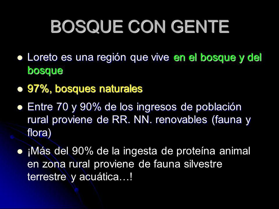 BOSQUE CON GENTE Loreto es una región que vive en el bosque y del bosque Loreto es una región que vive en el bosque y del bosque 97%, bosques naturale