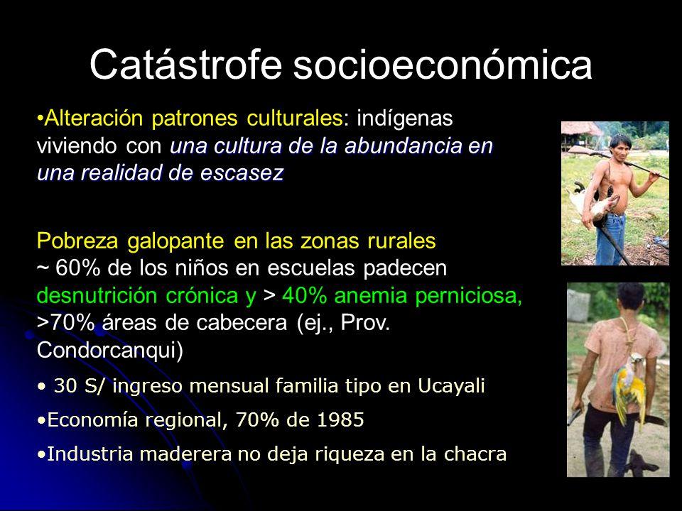 Catástrofe socioeconómica una cultura de la abundancia en una realidad de escasezAlteración patrones culturales: indígenas viviendo con una cultura de