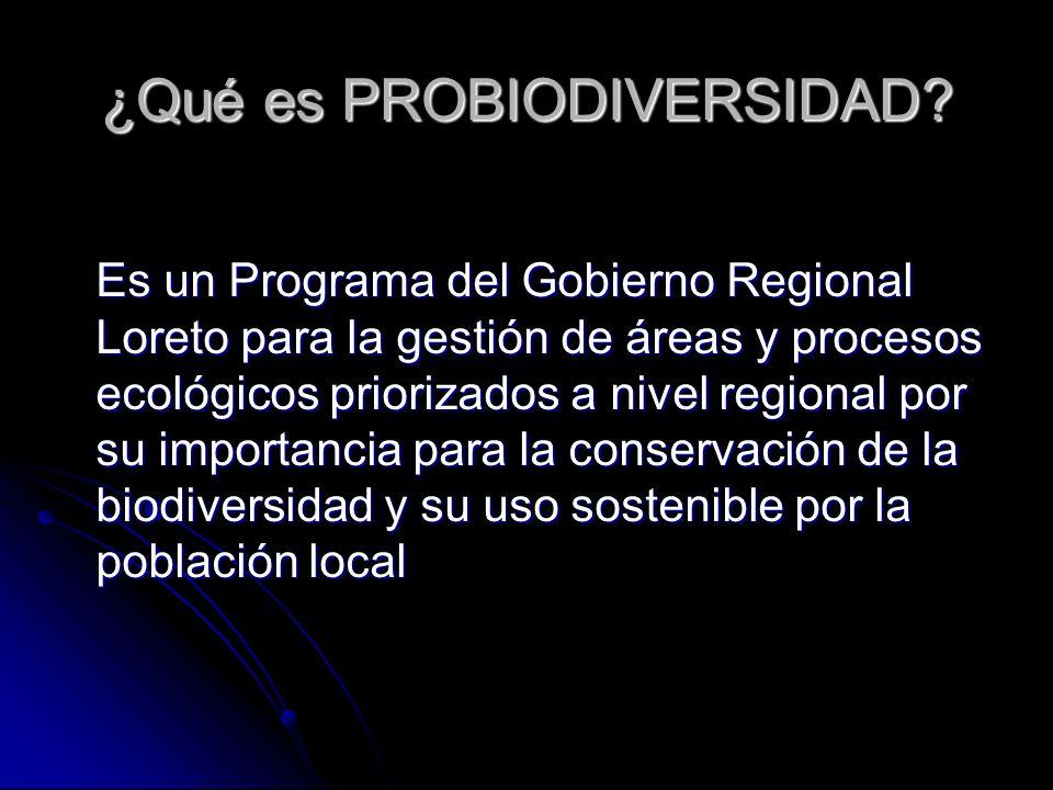 ¿Qué es PROBIODIVERSIDAD? Es un Programa del Gobierno Regional Loreto para la gestión de áreas y procesos ecológicos priorizados a nivel regional por
