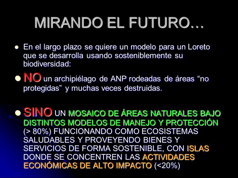 MIRANDO EL FUTURO… En el largo plazo se quiere un modelo para un Loreto que se desarrolla usando sosteniblemente su biodiversidad: En el largo plazo s