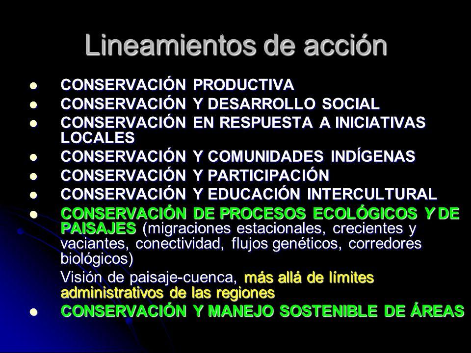 Lineamientos de acción CONSERVACIÓN PRODUCTIVA CONSERVACIÓN PRODUCTIVA CONSERVACIÓN Y DESARROLLO SOCIAL CONSERVACIÓN Y DESARROLLO SOCIAL CONSERVACIÓN