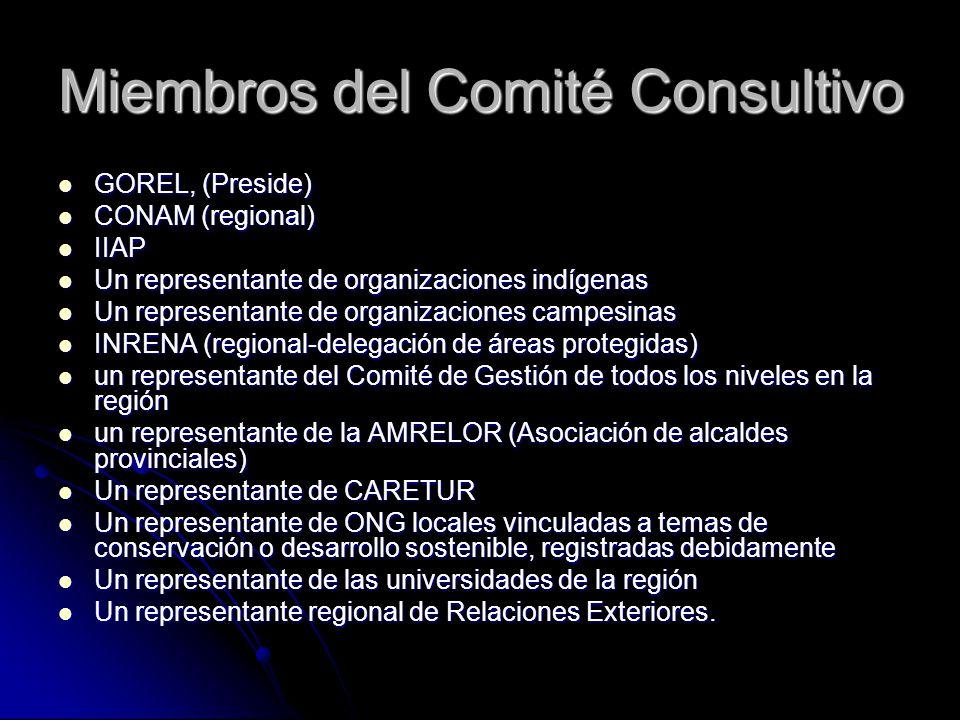 Miembros del Comité Consultivo GOREL, (Preside) GOREL, (Preside) CONAM (regional) CONAM (regional) IIAP IIAP Un representante de organizaciones indíge