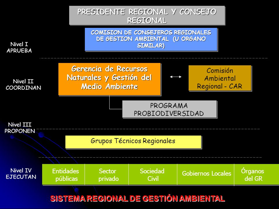 PRESIDENTE REGIONAL Y CONSEJO REGIONAL COMISION DE CONSEJEROS REGIONALES DE GESTION AMBIENTAL (U ORGANO SIMILAR) Gerencia de Recursos Naturales y Gest