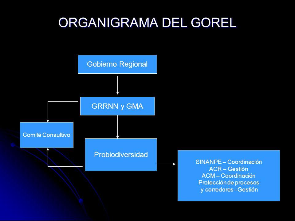ORGANIGRAMA DEL GOREL Gobierno Regional GRRNN y GMA Comité Consultivo Probiodiversidad SINANPE – Coordinación ACR – Gestión ACM – Coordinación Protecc