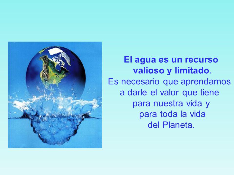 No nos olvidemos del agua… Beber, lavarnos, cocinar, limpiar, regar...