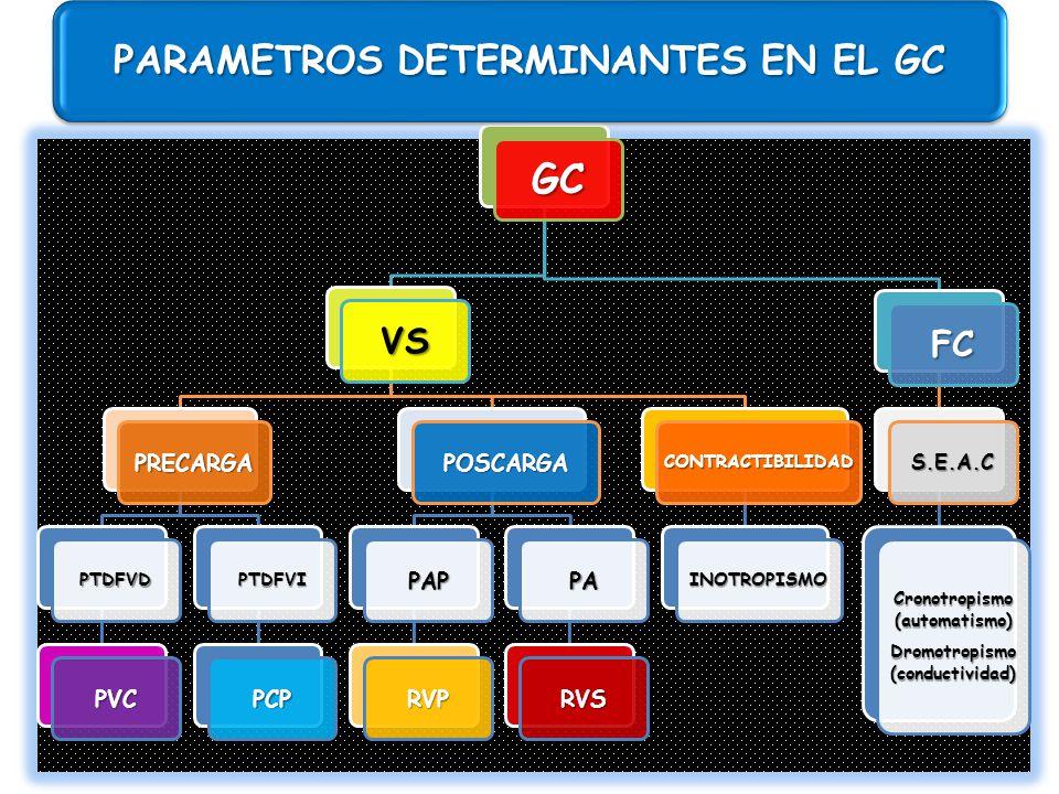 PARAMETROS DETERMINANTES EN EL GC