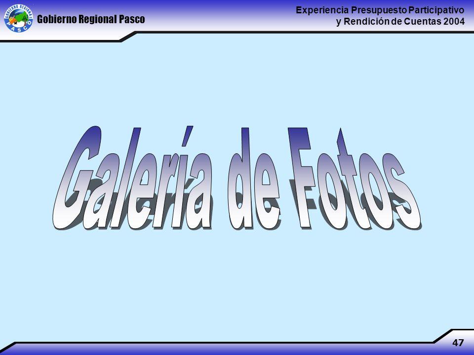 Gobierno Regional Pasco Experiencia Presupuesto Participativo y Rendición de Cuentas 2004 47