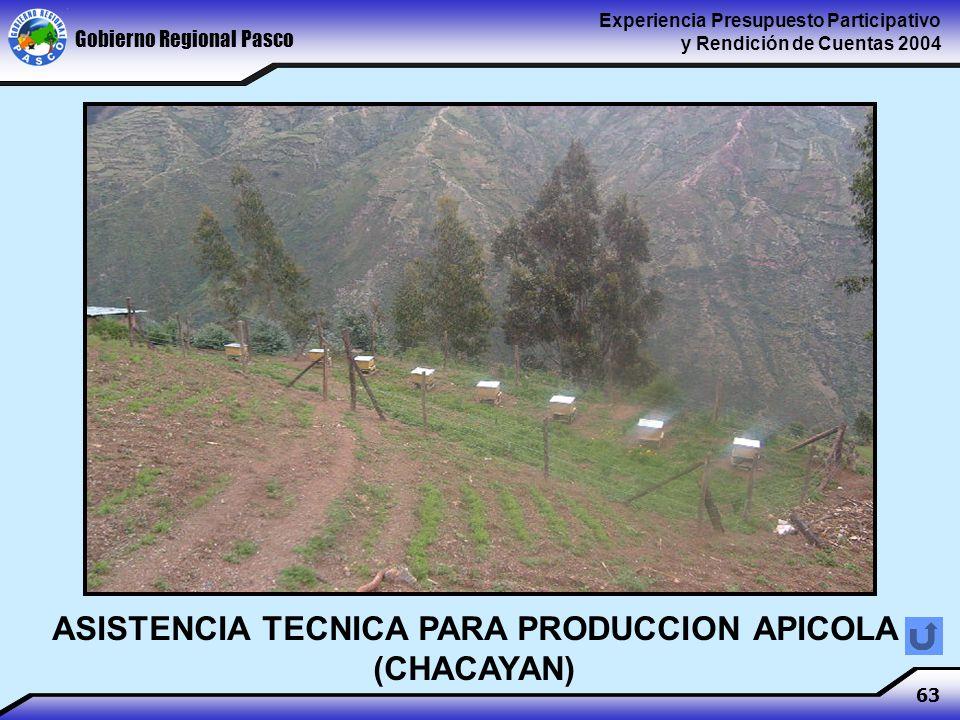 Gobierno Regional Pasco Experiencia Presupuesto Participativo y Rendición de Cuentas 2004 63 ASISTENCIA TECNICA PARA PRODUCCION APICOLA (CHACAYAN)