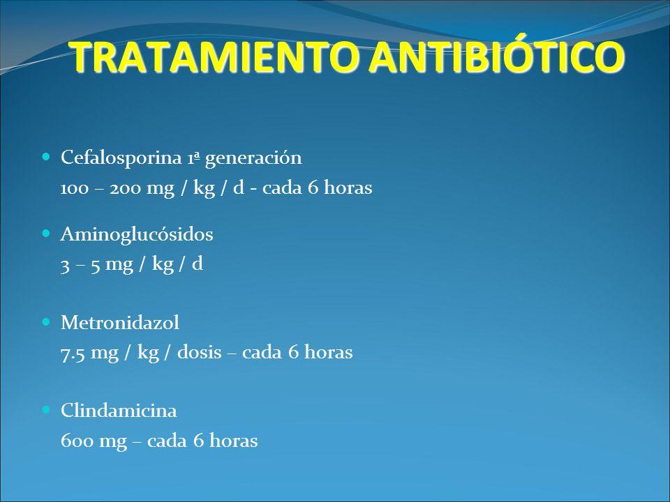 TRATAMIENTO ANTIBIÓTICO Cefalosporina 1ª generación 100 – 200 mg / kg / d - cada 6 horas Aminoglucósidos 3 – 5 mg / kg / d Metronidazol 7.5 mg / kg /