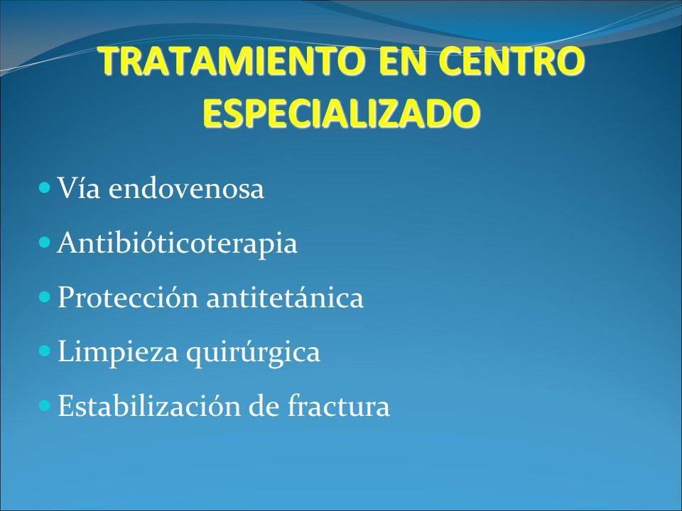 TRATAMIENTO EN CENTRO ESPECIALIZADO Vía endovenosa Antibióticoterapia Protección antitetánica Limpieza quirúrgica Estabilización de fractura