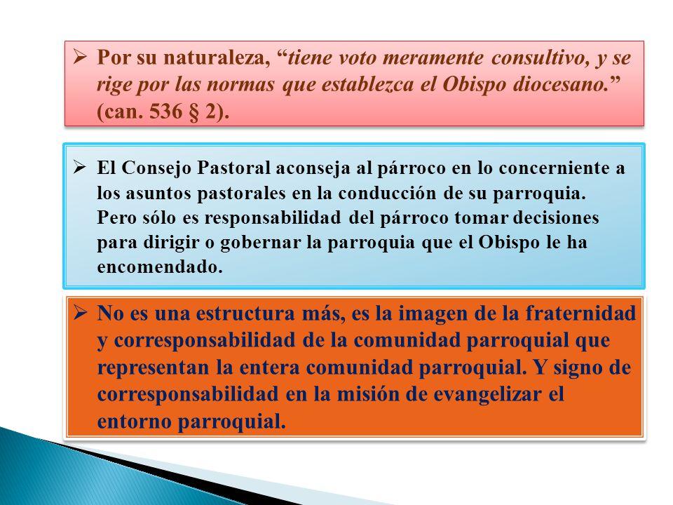 El Consejo Pastoral aconseja al párroco en lo concerniente a los asuntos pastorales en la conducción de su parroquia. Pero sólo es responsabilidad del