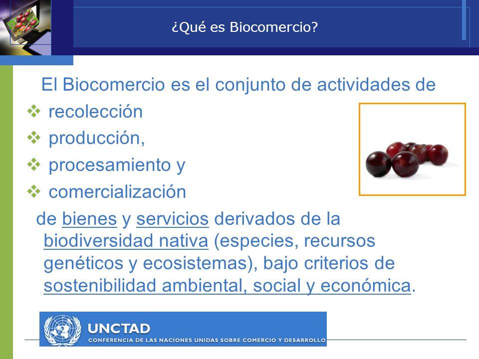 ¿Qué es Biocomercio? El Biocomercio es el conjunto de actividades de recolección producción, procesamiento y comercialización de bienes y servicios de