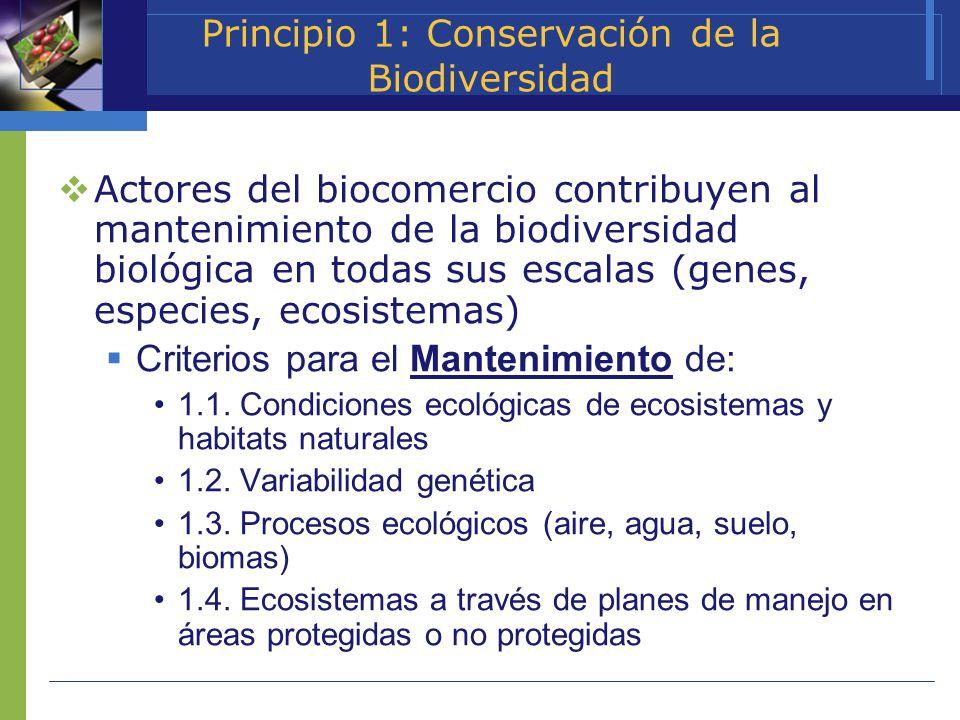 Principio 1: Conservación de la Biodiversidad Actores del biocomercio contribuyen al mantenimiento de la biodiversidad biológica en todas sus escalas
