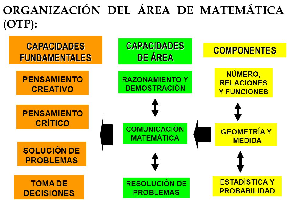 ORGANIZACIÓN DEL ÁREA DE MATEMÁTICA (OTP): NÚMERO, RELACIONES Y FUNCIONES GEOMETRÍA Y MEDIDA RESOLUCIÓN DE PROBLEMAS RAZONAMIENTO Y DEMOSTRACIÓN COMUN