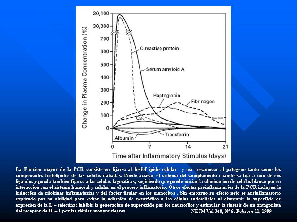 La Funciòn mayor de la PCR consiste en fijarse al fosfol``ipido celular y asì reconocer al patògeno tanto como los componentes fosfolìpidos de las cèl