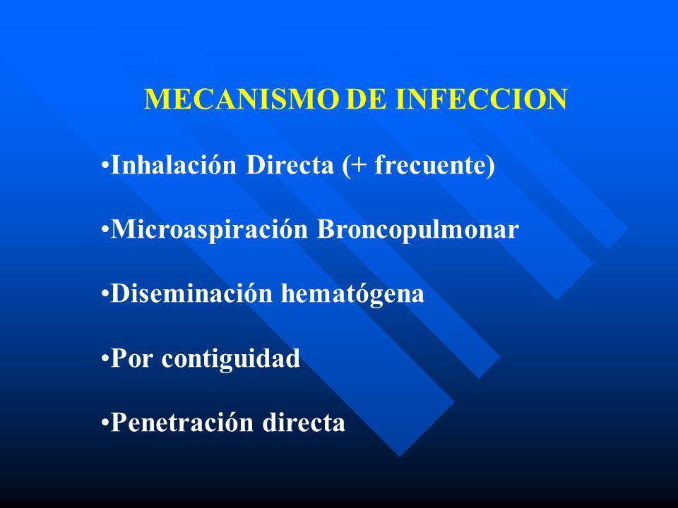 NEUMONIAS ATIPICAS ZOONOTICAS NEUMONIAS ATIPICAS NO ZOONOTICAS SINTOMASPSITACOSIS FIEBRE Q TULAREMIAMYCOPLASMLEGIONELLACHLAMYDIA Confusión + / - + Cefalea++ Meningismo+ Mialgia++++ Dolor ótico + / - Pleuritis + Dolor Abdom + Diarrea + / - + SIGNOS Rash +/- Horder +/- Erit Mu +/- Raynaud + / - Faringitis+ ++ Hemoptisis++ N.