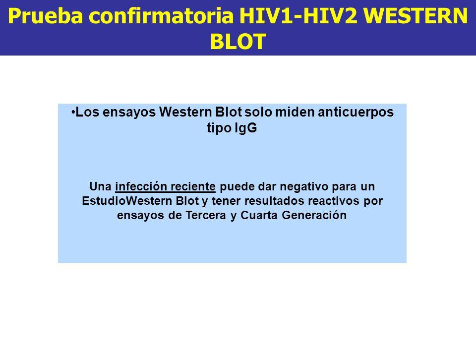Prueba confirmatoria HIV1-HIV2 WESTERN BLOT Los ensayos Western Blot solo miden anticuerpos tipo IgG Una infección reciente puede dar negativo para un